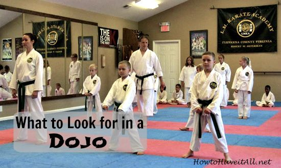 Wanting to start martial arts? Checkout these tips on deciding what karate dojo to attend.