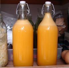 probiotic orange: 8 organic oranges  6 organic tangerines  sweetener of choice to taste   1 c. whey (drained from plain yogurt)  1 generous T zest from one of the tangerines