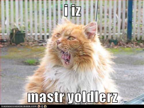 Yodeling.. is an art, yes?: Funny Cat Pictures, Cat Personalized