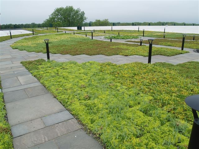 Best 79 Best Green Roofs Images On Pinterest Green Roofs 400 x 300