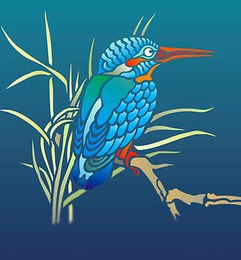 4404 best birds paintings and drowings images on pinterest