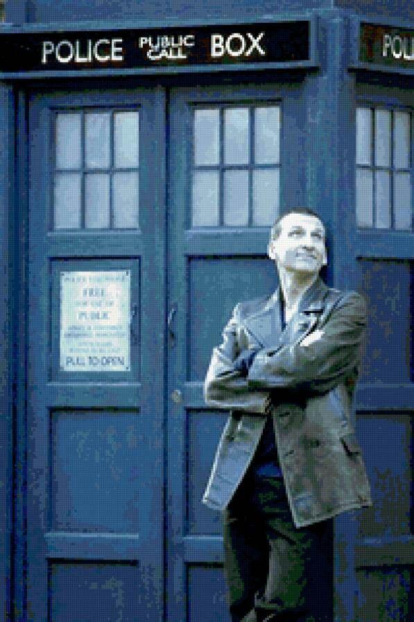"Вышивка ""Тардис и 9-й доктор"""