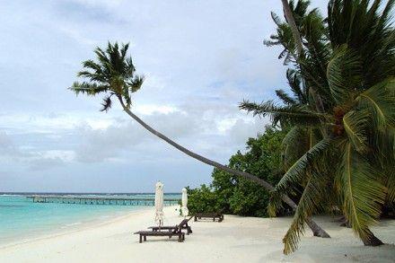 Malediven – Vakarufalhi Island Resort: Malediven – traumhafte Strände, Robinson Feeling pur, die Seele baumeln lassen, gutes Essen, die Unterwasserwelt bestaunen – was will man mehr? Die Liste ist lang und ich finde immer wieder einen guten Grund um auf den Malediven meine Ferien zu verbringen.