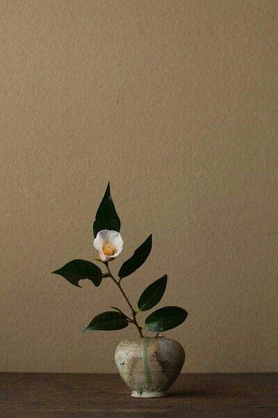 Japanese flower arrangement.