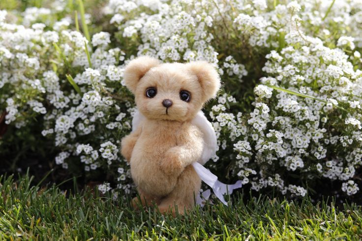 Artist collectible Teddy bear Poty (OOAK) by TEDDYROOM on Etsy