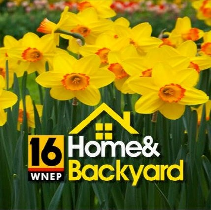 Wnep Tv Home And Backyard 28 Images Wnep Tv Tour Wnep