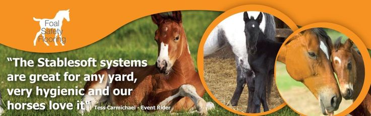 If you proudly own a horse then you also need to fulfill your several responsibilities like offering them healthy living place by purchasing the best quality stable mats UK. http://www.stablesoft-europe.com/