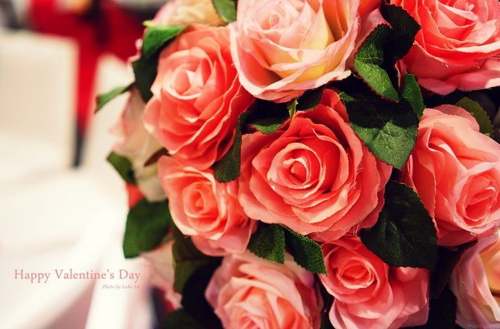 red roses valentines day tumblr