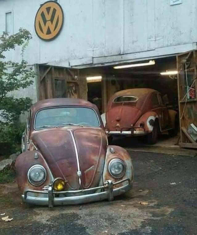 "Hello I am Steve this is our Club in Detroit. "" ""56 ""ragtop.Belongs to me. Itz more than an..."