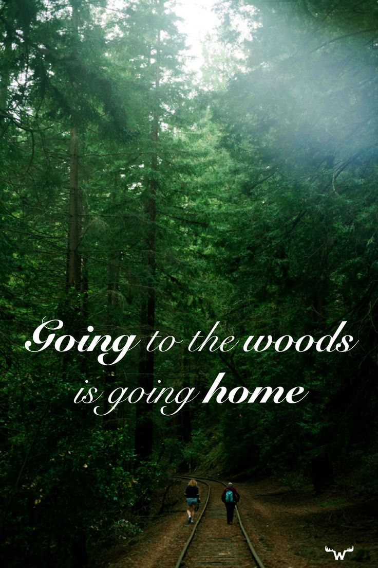 Going to the woods is going home. #hiking