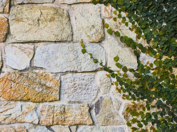 Close up of Eco Outdoor Coolum random ashlar stone walling, design by Entrenched Landscapes. | Eco Outdoor | Coolum random ashlar walling | livelifeoutdoors | Outdoor Design | Natural stone walling | Garden design | Outdoor paving | Outdoor design inspiration | Outdoor style | Outdoor ideas | Luxury homes | Paving ideas | Garden ideas | Stone veneer | Stone walling | Stone wall cladding | Stone feature wall