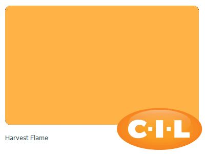 Look at this gorgeous CIL paint colour I found at CIL.ca!  It's Harvest Flame 09YY 57/689.