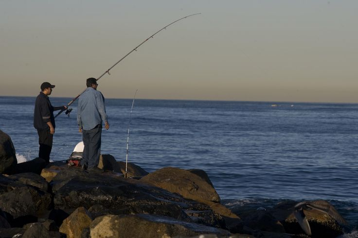 12 best los angeles family events images on pinterest for Redondo sport fishing