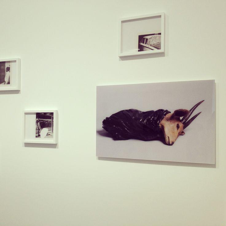 The Photographer's Gallery FRESHFACED+WILDEYED 2013 #SunilShah
