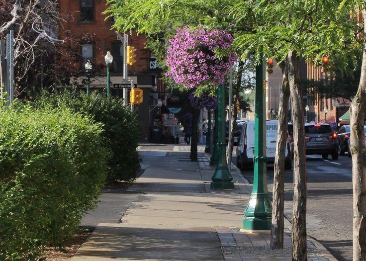 La cobertura arbórea hace que los ambientes urbanos sean más limpios y más agradables para vivir