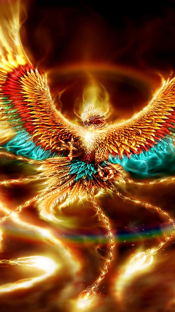 Phoenix Wallpaper For iPhone in 2020 (With images