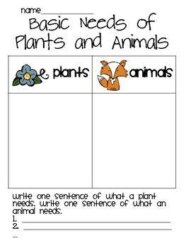 BASIC NEEDS OF ANIMALS AND PLANTS - TeachersPayTeachers.com