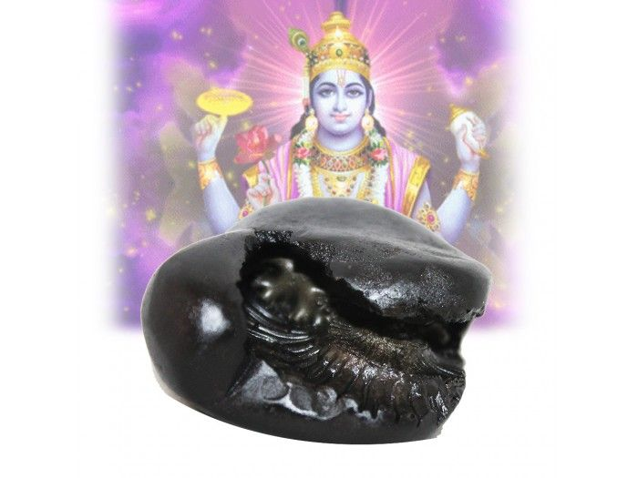 Vishnu One who sees the Chakradhari Vishnu Shaligrama gets eternal peace. The worshipper gets rid of from obstacles, fear of ghosts, snakes and evil spirits. http://vedicvaani.com/Chakradhari-Vishnu-Shalagram-Shila . Buy online Shaligram Shila from India.