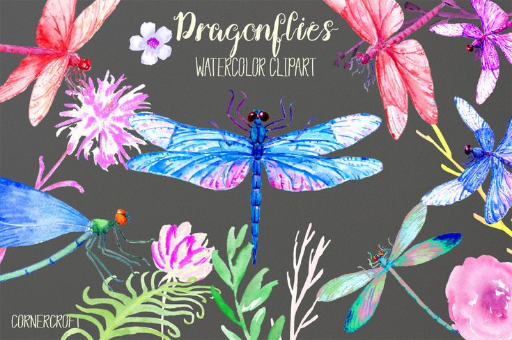 Watercolor dragonflies - dragonfly clipart, blue dragonfly, purple dragonfly, damselflies and decorative flowers for instant download. by CornerCroft on Etsy