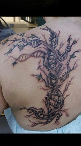 17 Best images about dna on Pinterest | Dna art, Double ...