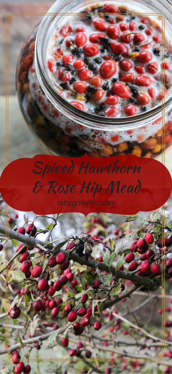 Spiced Hawthorn and Rose Hip Mead for a Joyful Heart