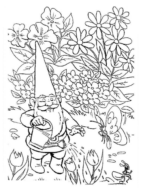 david the gnome, : David the Gnome Watering His Garden