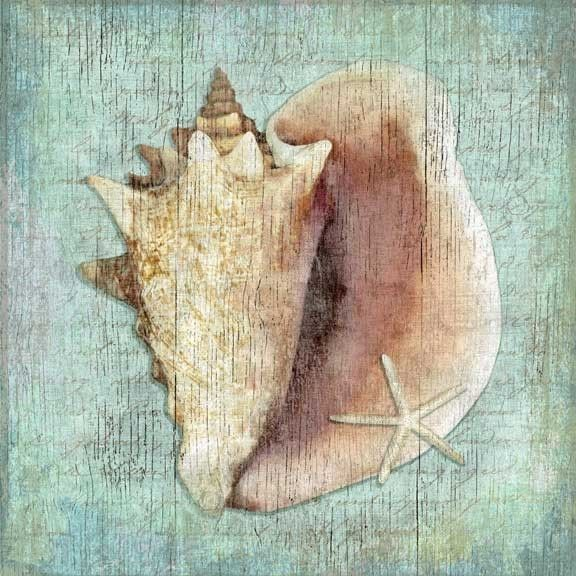 Aqua Distressed Pink Conch Shell Art - love these!