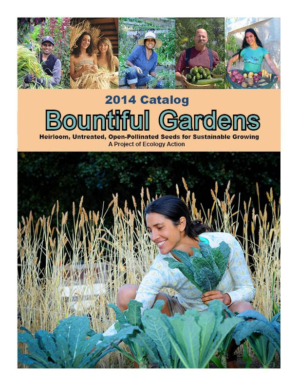 Bountiful Gardens Seeds 2014 Catalog. All seeds are open-pollinated (Non-GMO, seed-saver friendly). Heirloom Vegetable Seeds, Heirloom Flowers & Grains, Medicinal Herb Seeds, Culinary Herb Seeds, Rare Seeds, Compost & Cover Crop Seeds for Soil-Building, Tree Seeds & Berry Seeds for Permaculture/Shelterbelts. #SeedCatalogs #Gardening