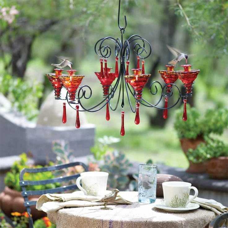 Breakfast with a couple of hummingbirds...