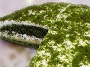 ıspanaklı yaş pasta
