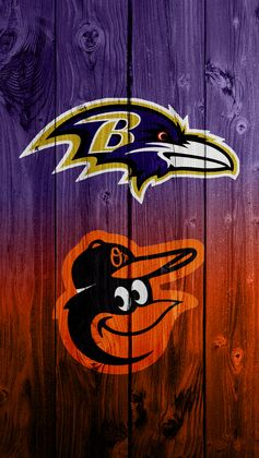 Baltimore Ravens and Orioles....................