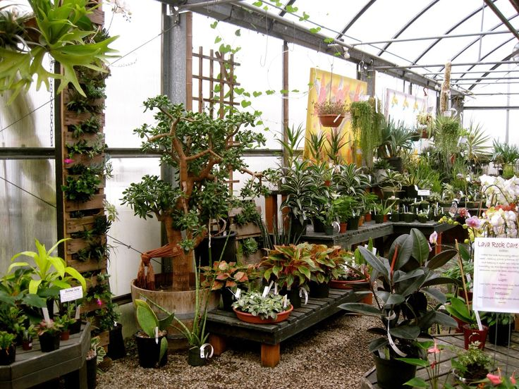 Bonney Lassie: A Visit to Valley Nursery