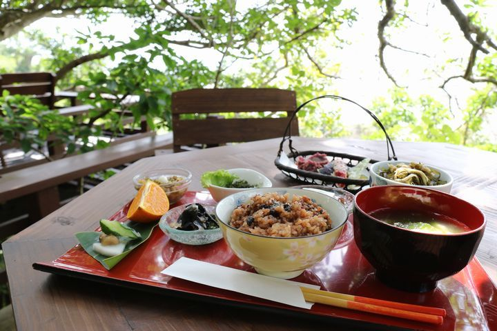 緑に抱かれ、海を眺めながら食べる。沖縄料理と石窯ピザ「山の茶屋 楽水」 沖縄CLIP