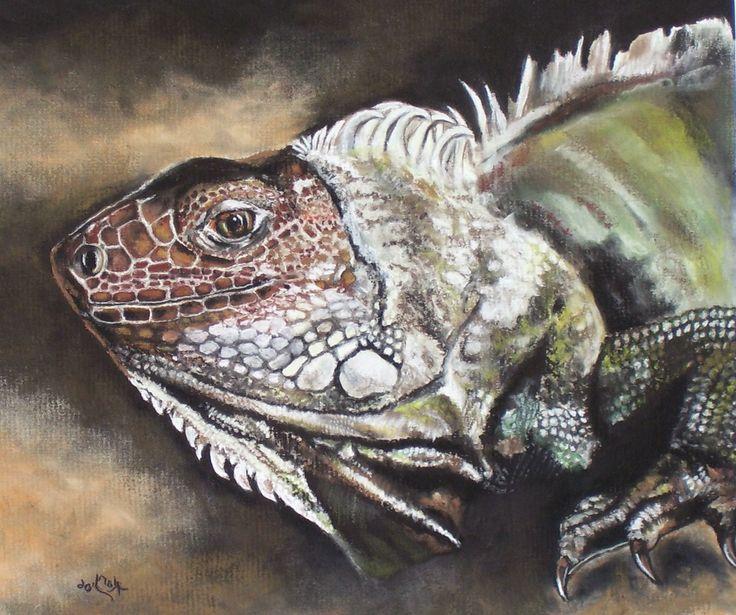 Iguana by Kary