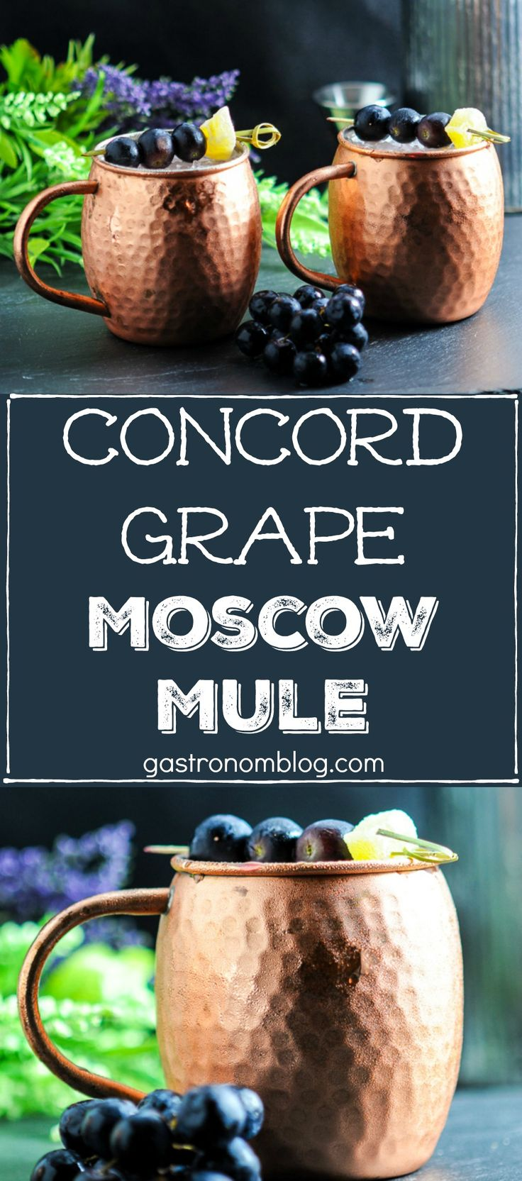 These Concord Grape Moscow Mules are a great combination of vodka, ginger beer, lime and concord grape syrup. Perfect craft cocktail for the fall. #grapes #vodka #ginger #moscow