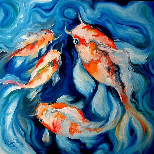 56 best images about fish on pinterest for Koi fish lifespan