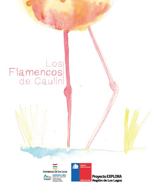 """""""Los flamencos de Caulín"""" autora Ana María Pení, asesoría científica Claudio Tobar"""