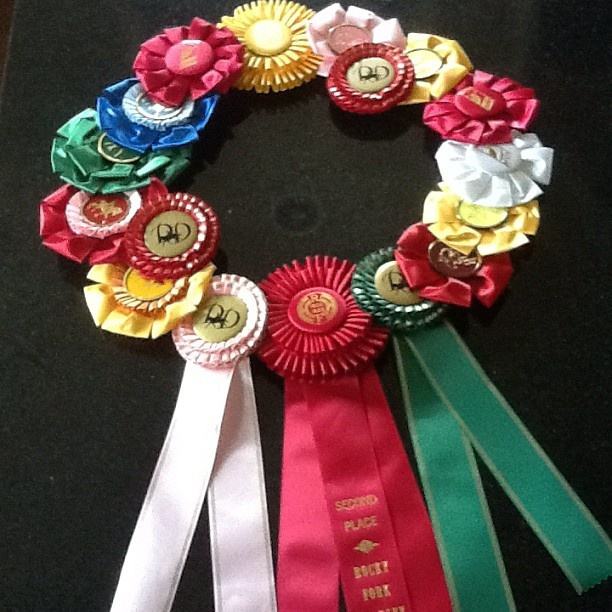 My sister who is craft lady extraordinaire helped me put this together. It is 2 years of horse shows.