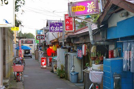 田名部神社の西側に位置する神社横丁は、もともとは戦後の闇市があった場所で、昭和の時代は、数軒の魚屋を中心に、餅屋、古本屋、駄菓子屋、食堂などが軒を連ねてい...