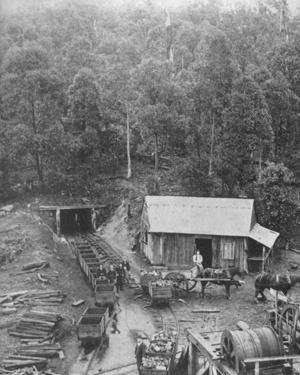 Coal train, Wollongong. History NSW (Photo undated) v@e