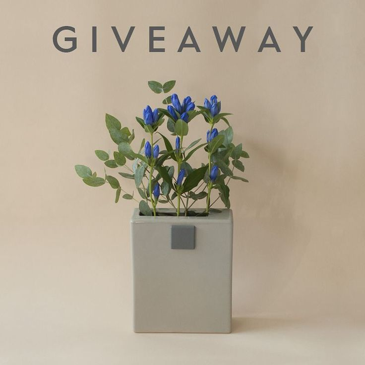 We are giving away one You've Got Flowers vase, designed by Ruxi Sacaliș! For a chance to win, simply describe the vase in your own words and post your answer below, in the comment.    The winner will be selected on Wednesday, the 15th of November, 11.00 a.m., and contacted via direct message.