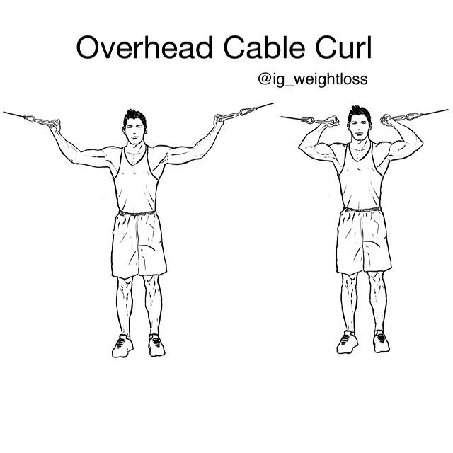 Overhead Cable Curl - Primary muscle group: Biceps Equipment: Cable station