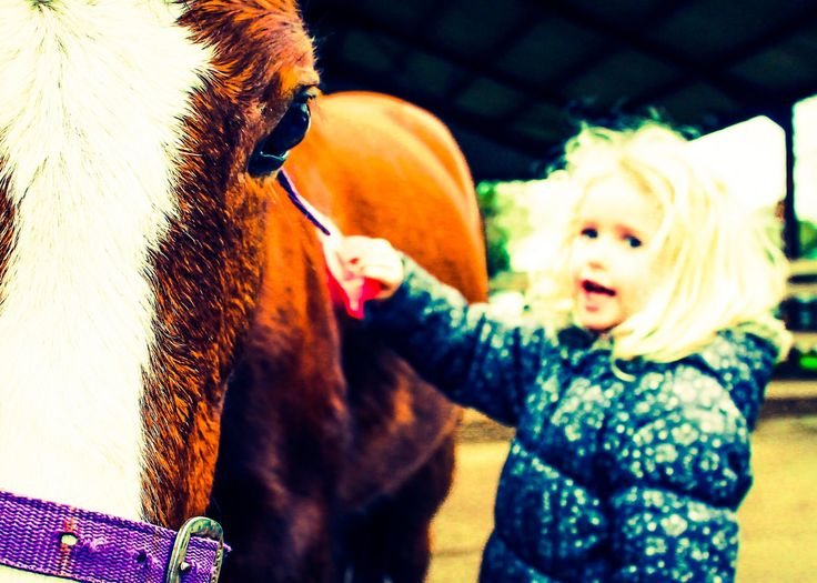 Nostalgia for mummy new experience for girlsgroomingfun #ponypalace #fortheloveofhorses #horses #grooming