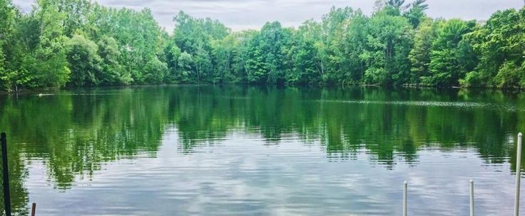This Hidden Swimming Hole Is One Of Ottawa's Best Kept Secrets featured image