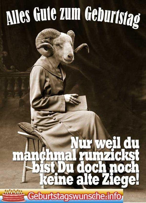 Schone Gute Nacht Spruche Gif Freche Geburtstagsspruche Lustige