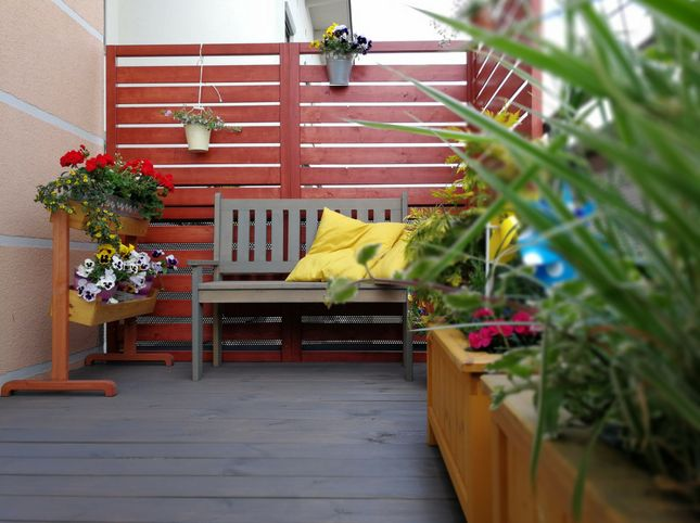 pergole drewniane DIY