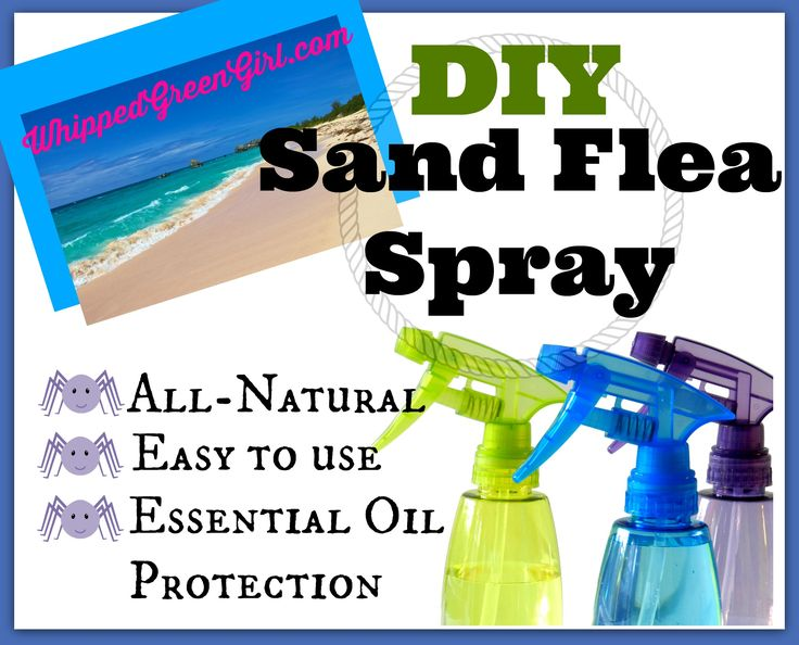 DIY sandflea repellent/spray! Ill never go down south without this stuff again! Using essential oils! #DIY #organic #allnatural By WhippedGreenGirl.com