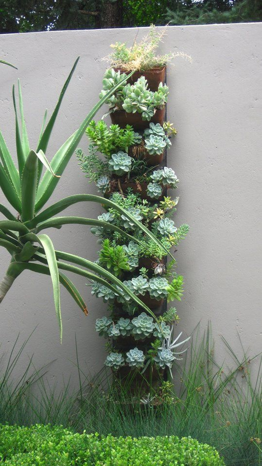 Recycled material, vertical, succulent planting
