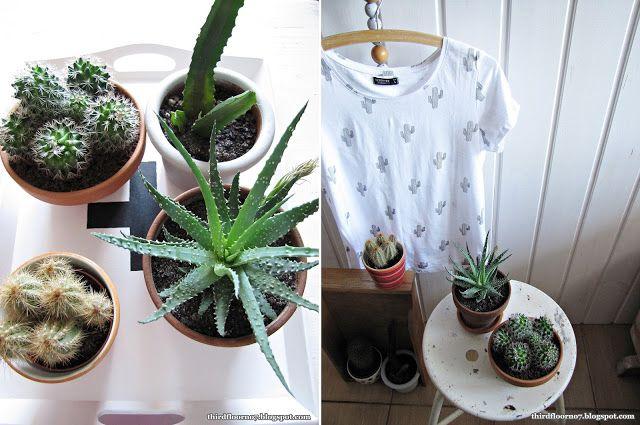 cactus vintage