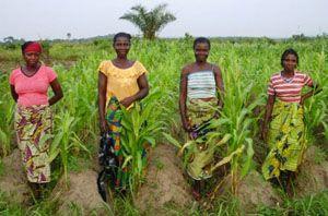 L'action d'Urgence Afrique à Togbota passe également par un programme de développement économique basé sur la commercialisation des produits de l'élevage et du maraichage. Ce projet, comme beaucoup d'autres développés par l'association, s'appuie sur des  groupements de femmes. #benin #togbota #action